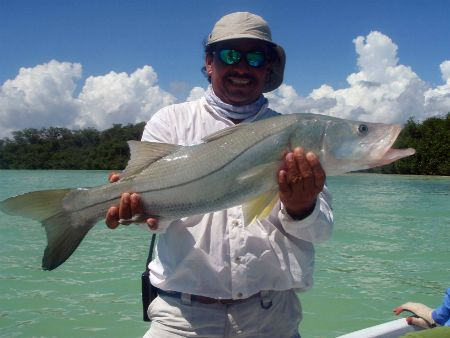 Ascension bay snook fly fishing